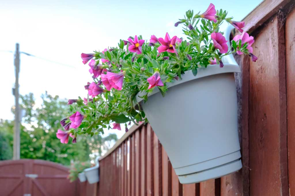 Fence hanging pot