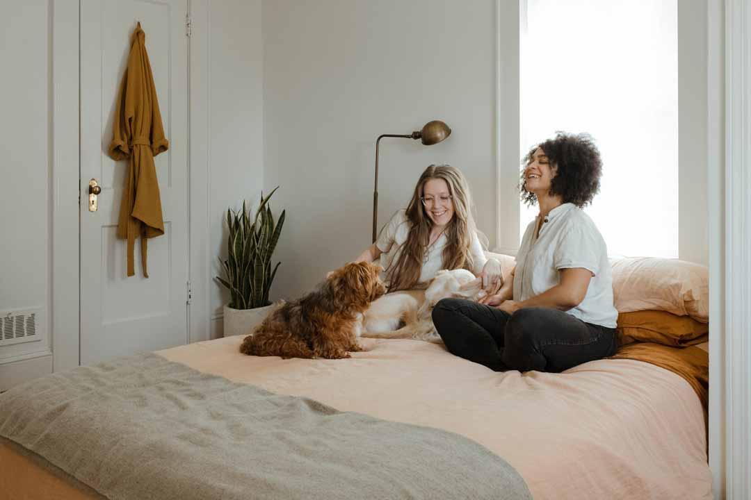 happy tenants financial referencing